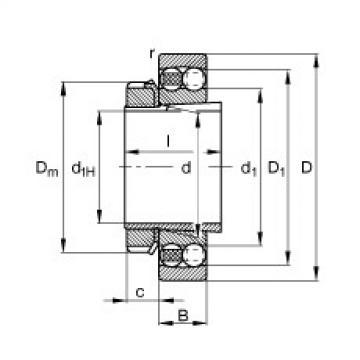 roulements 1309-K-TVH-C3 + H309 FAG
