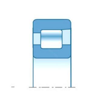 roulements NFV2956 NTN