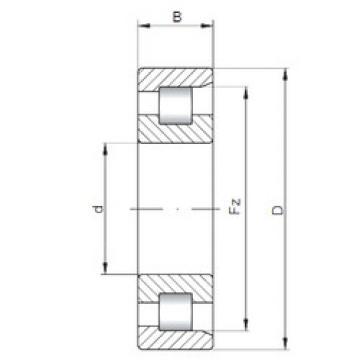 roulements NF18/1600 CX