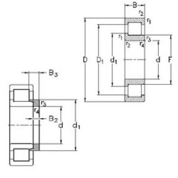 roulements NJ203-E-TVP3+HJ203-E NKE