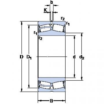 roulements 24030-2CS5/VT143 SKF