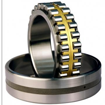 Bearing NNU49/500MAW33