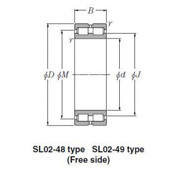 Bearing SL01-4840