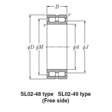 Bearing SL02-4940