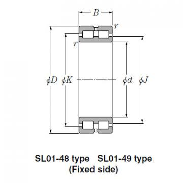 Bearing SL02-4868