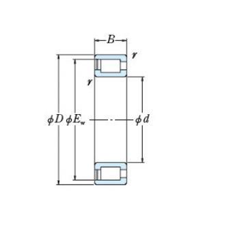Bearing NCF18/750V