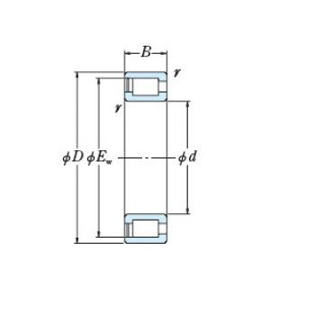 Bearing NCF3022V