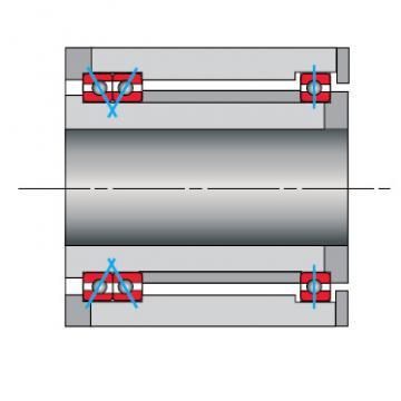 Bearing NF100CP0