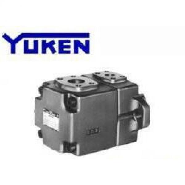 YUKEN S-PV2R24-65-136-F-REAA-40 #1 image